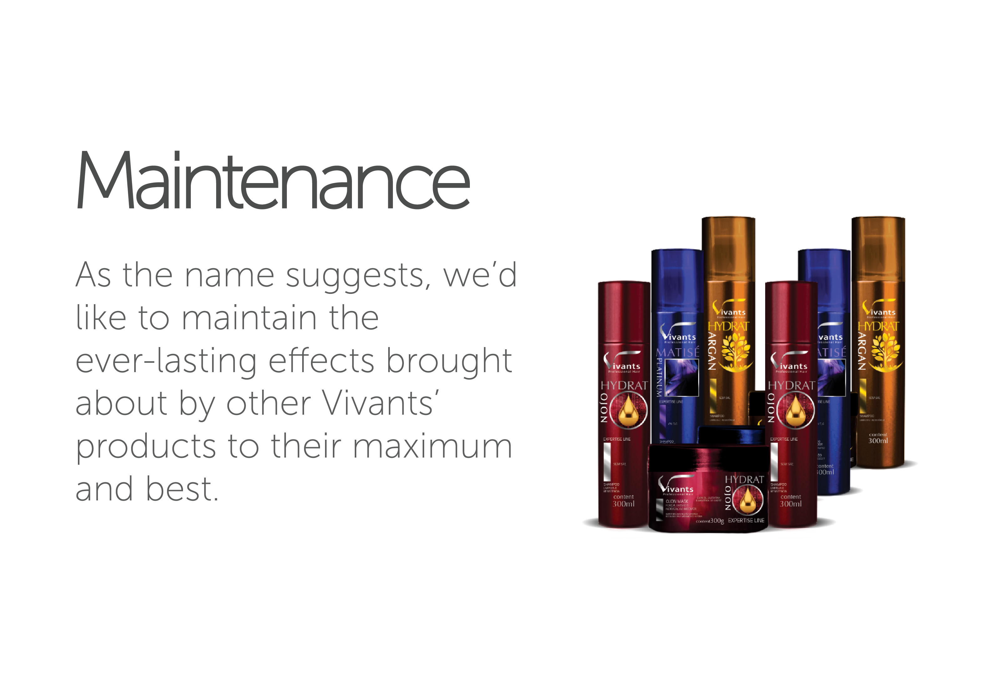 Maintenance Vivants Professional Hair's line of Hair Maintenaning Products.