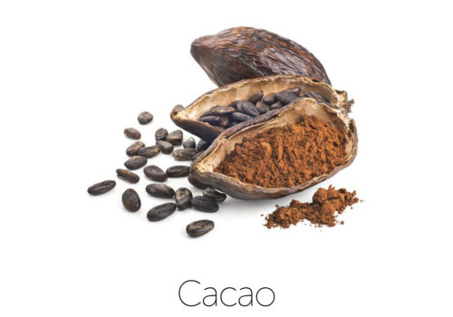 ingredientCacao