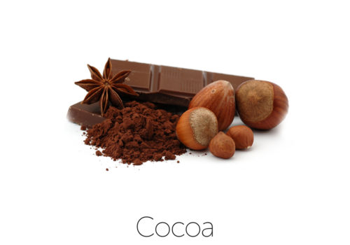 ingredientCocoa